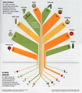 Fuente: http://www.laaldeaglobal.com/2011/07/06/la-extincion-silenciosa-adios-al-90-de-las-variedades-de-frutas-y-verduras/