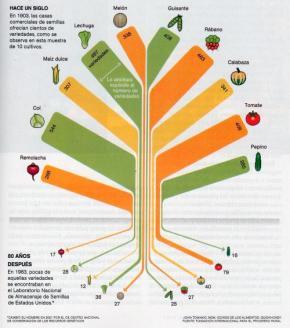 En un siglo hemos terminado con el 90% de las variedadescomestibles